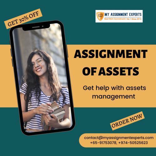 Free assignment sample on asset management