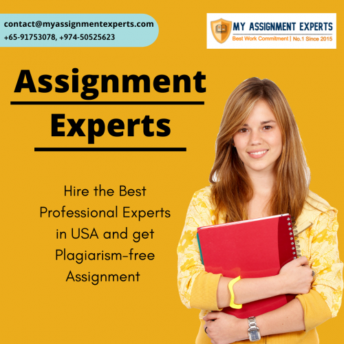 World's Top Assignment Experts   Best Assignment Writing Experts