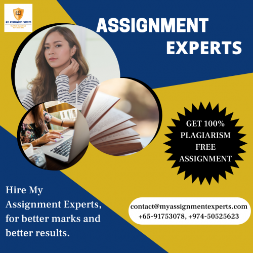 World's Top Assignment Experts | Best Assignment Writing Experts